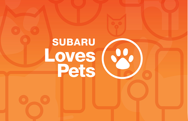 LovePromise_Pets_Bkgd_Logo.png