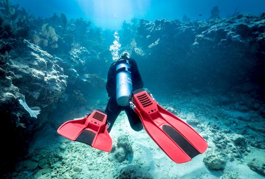 SDI-Diver-in-Ocean-Photo-15.jpg