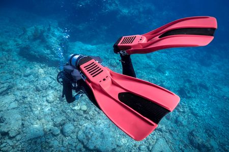 SDI-Red-Fins-Underwater-Photo.jpg