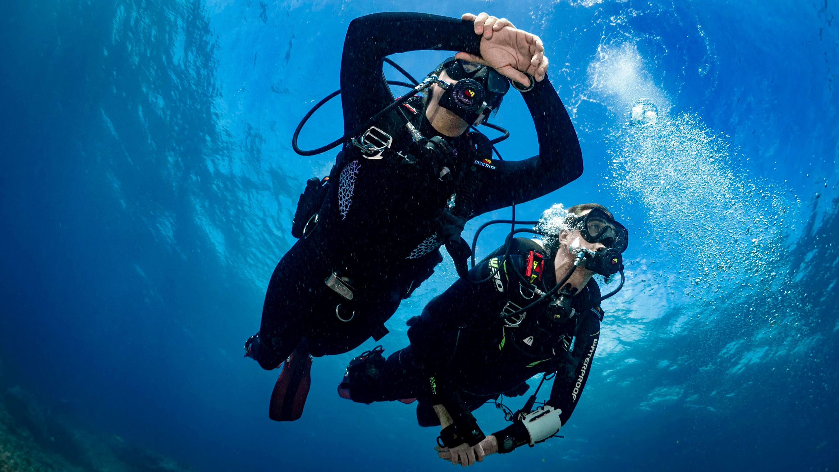 SDI-Divers-from-Below-Photo.jpg